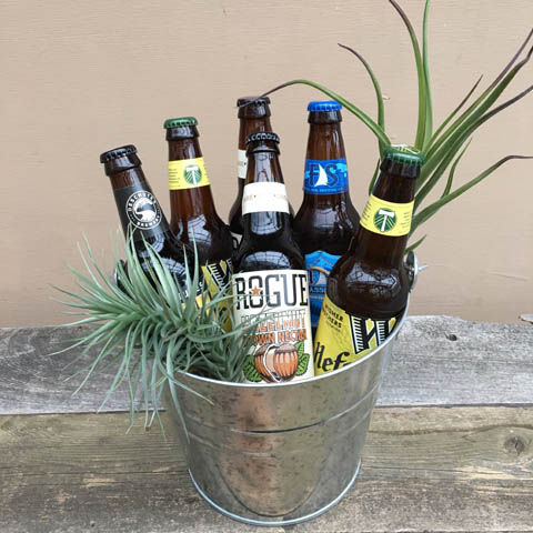 Oregon Brewers Beer Bucket and Tillandsia Plants